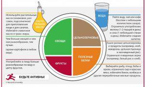 Рекомендации специалистов по правильному питанию