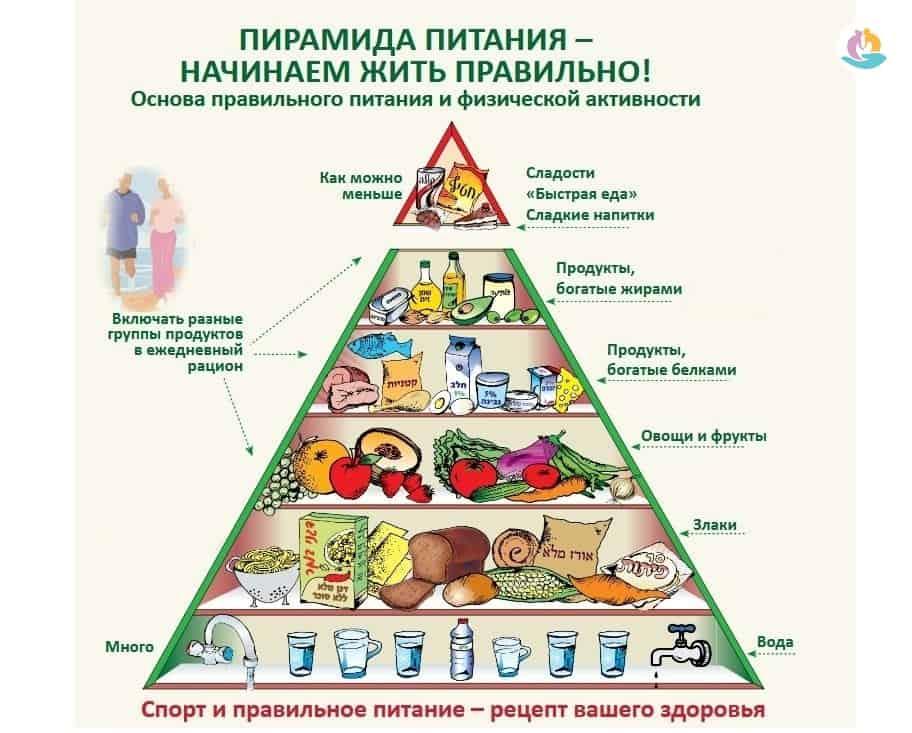 Разработать Схему Питания Для Похудения. Как похудеть на правильном питании - принципы и рацион, разрешенные продукты
